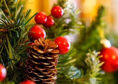 Christmas Shopping Fayre